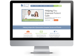 IECP Vision Website